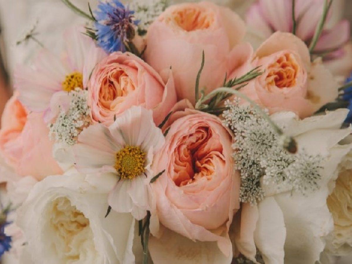 Piante Da Regalare A Pasqua il mazzo di fiori giusto per ogni occasione ed anniversario