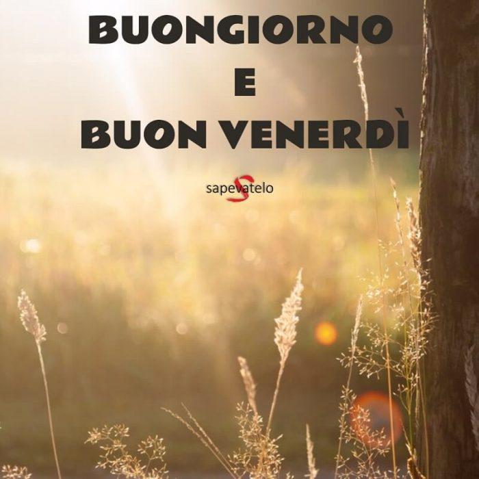 Buon venerd immagini e foto gratis da condividere for Foto buongiorno amici