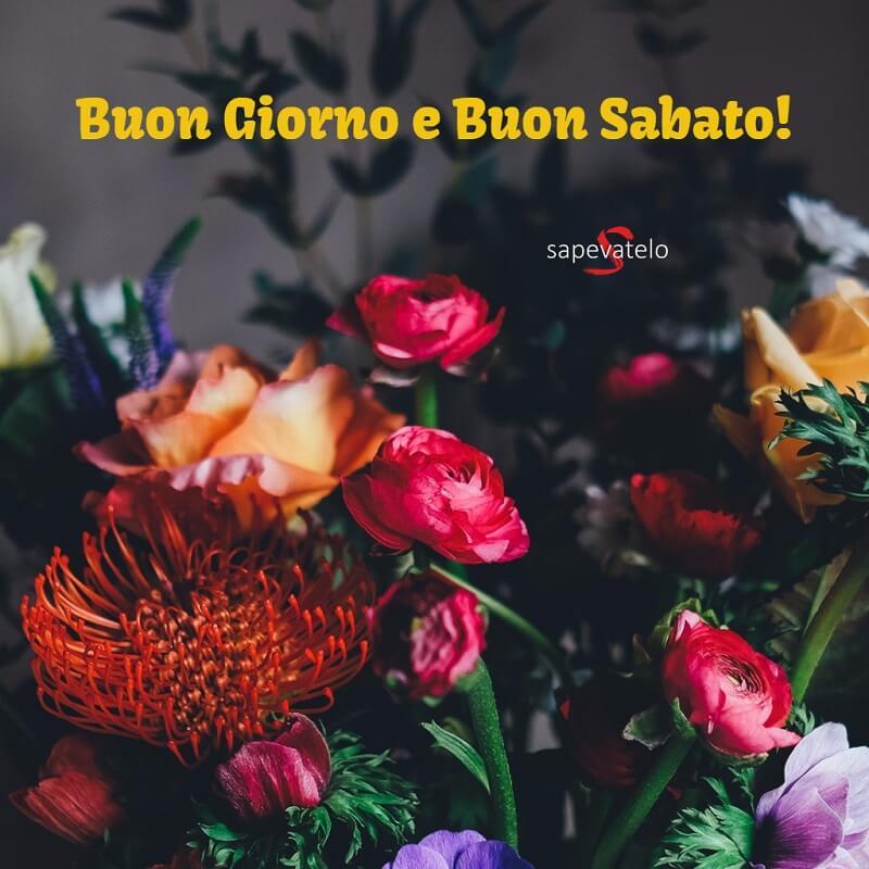 Buon sabato 19 sapevatelo for Foto buongiorno gratis