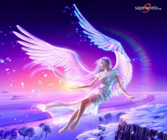 foto angeli