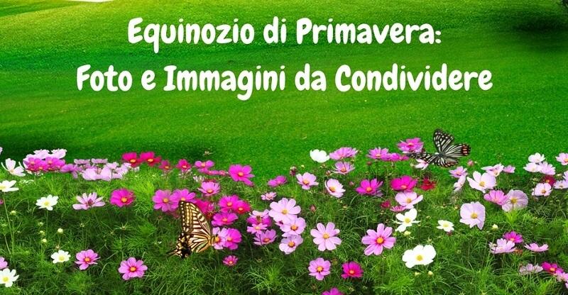 Equinozio di Primavera: Foto e Immagini gratis da condividere