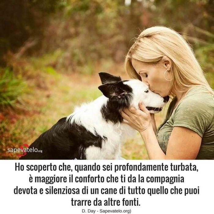 Le Piu Belle Frasi Sui Cani I Migliori Amici Dell Uomo