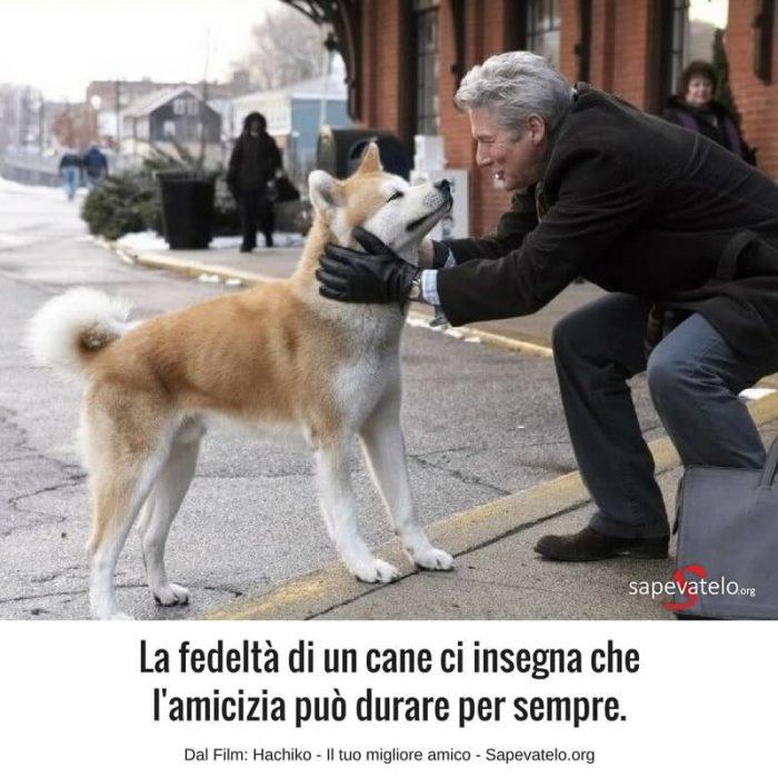 frasi sui cani film