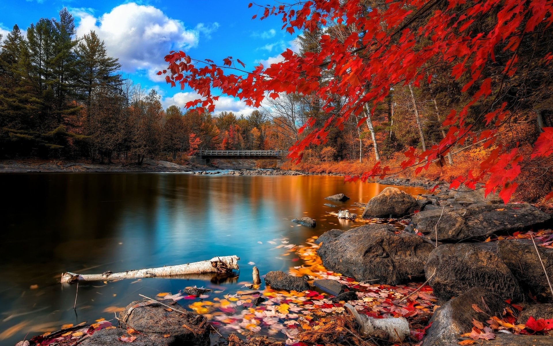 Sfondi desktop autunno