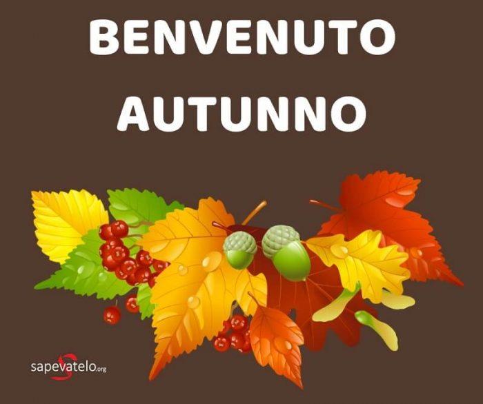 immagini autunno per whatsapp