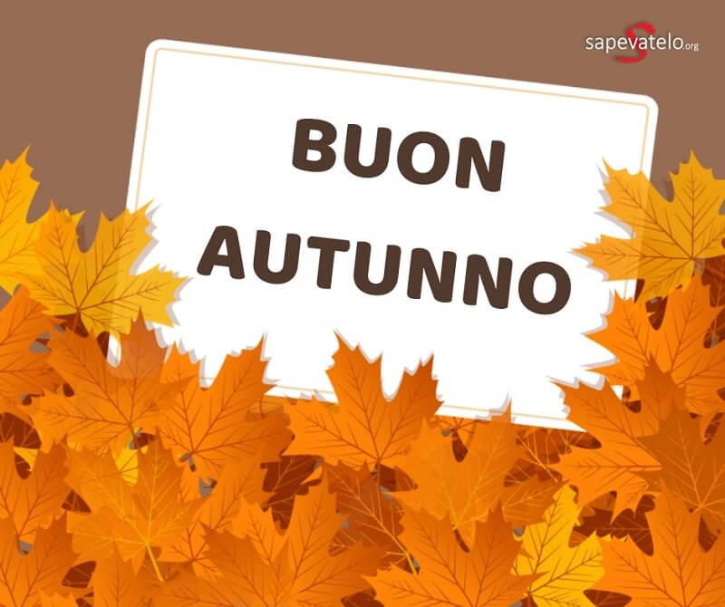 foto autunno gratis