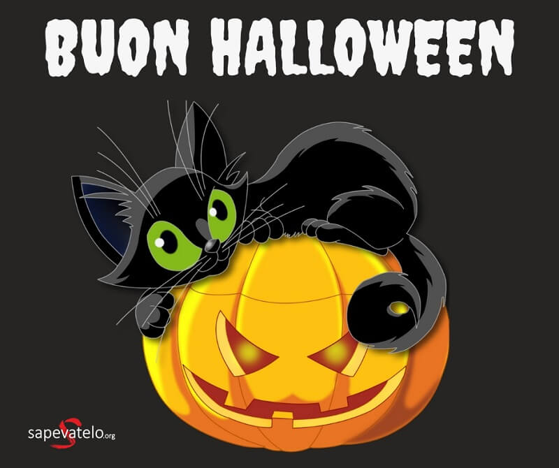 immagini per halloween