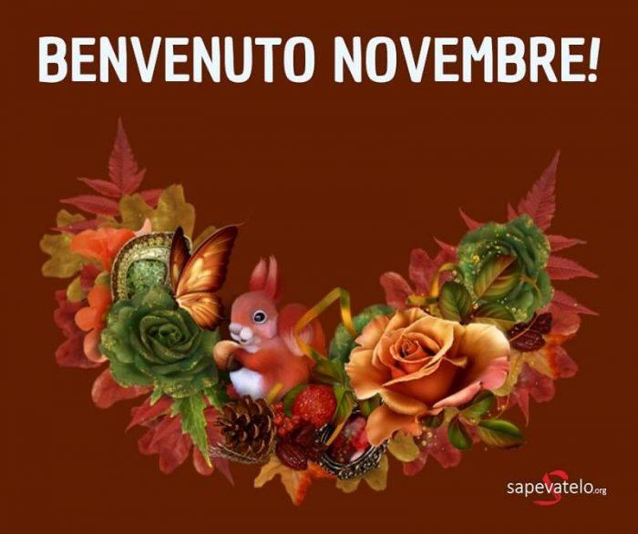 Novembre Immagini E Foto Gratis Da Condividere Sapevatelo