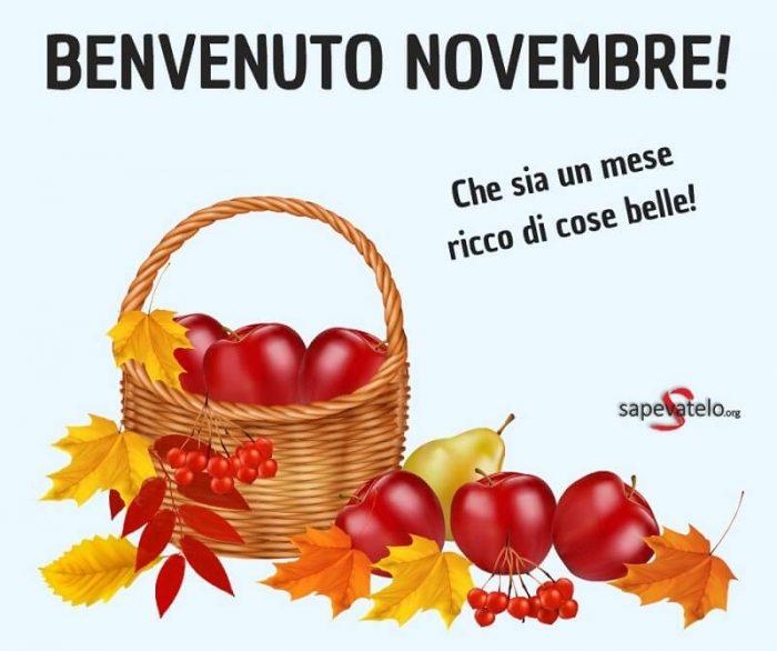 immagini novembre