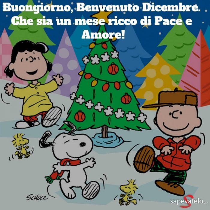 immagini di benvenuto dicembre